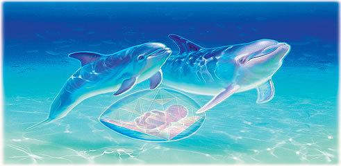 Что такое роды в воде, плюсы и минусы водных родов в роддоме и дома