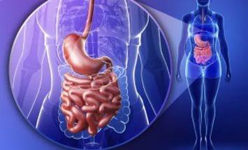 Диспепсия желудка: симптомы, причины, диагностика, методы лечения диспепсии – медикаментозные препараты и народные средства при диспепсии.